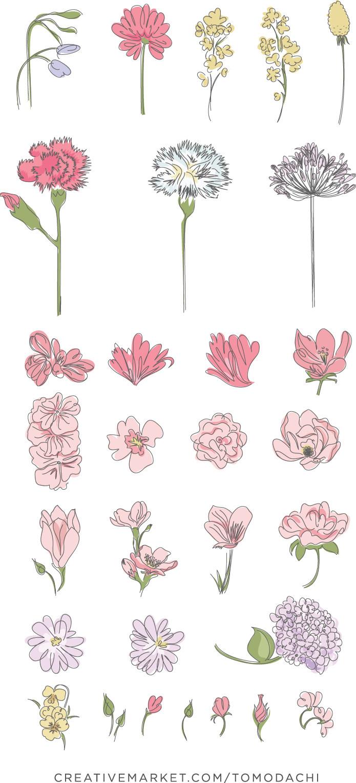 花朵插画素材