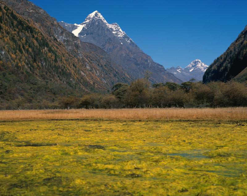 背景 自然图片 自然风景 自然图片                       设计宝所有