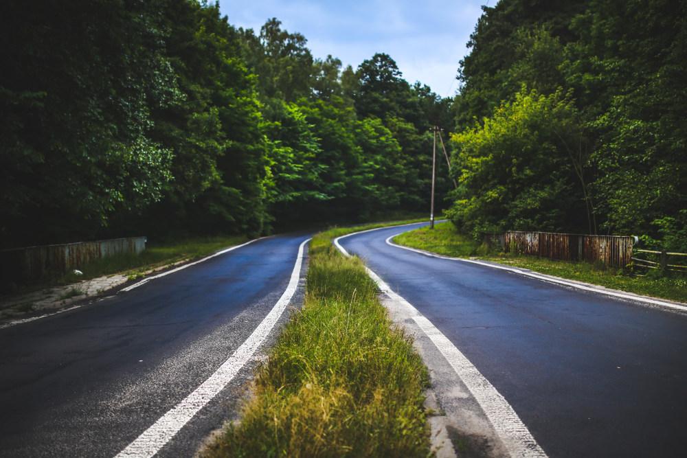 路旁的树林高清自然风景摄影图