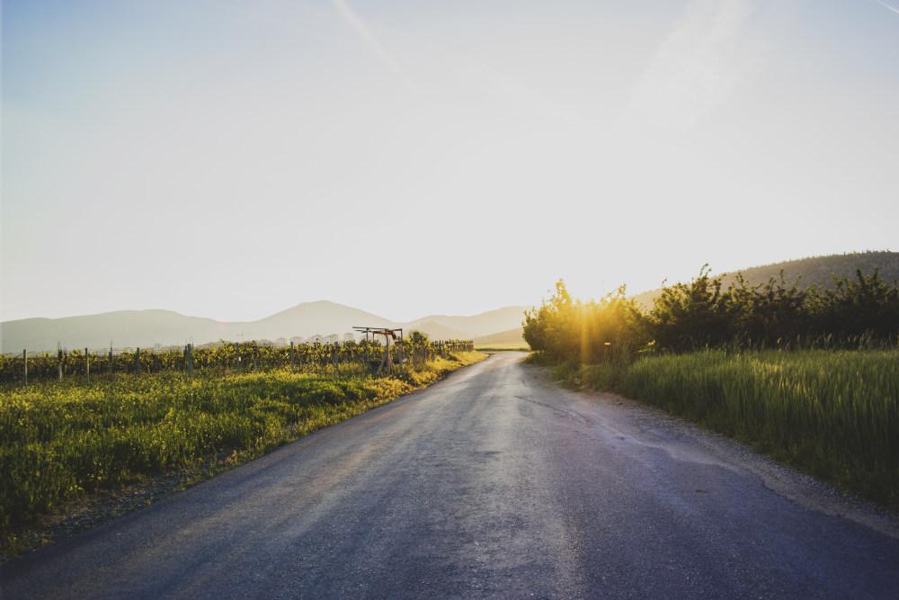 道路与油菜花 高清自然风景背景摄影图 壁纸