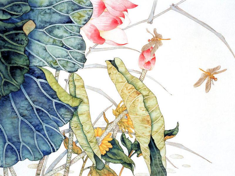 工笔画荷花蜻蜓