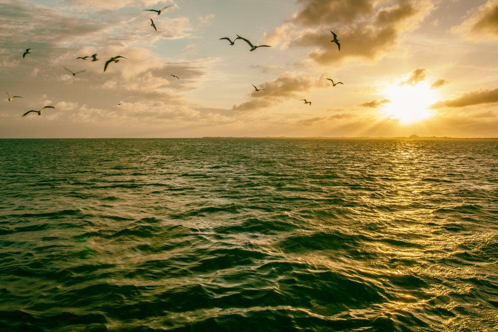 夕阳下的海平面 高清自然风景背景摄影图 壁纸